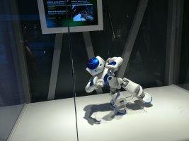 A80 Humanoidrobots2